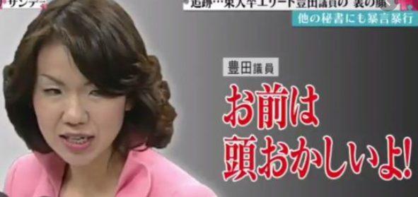 豊田真由子の若いころからこのハゲー!発言までの画像