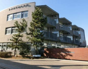 鶴田真由の出身小学校は湘南学園小学校です。